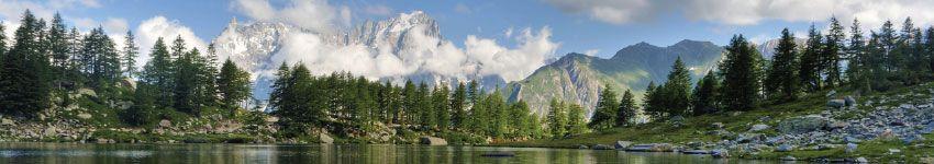 Torrefazioni di Caffè in Valle d'Aosta Cialde e Capsule